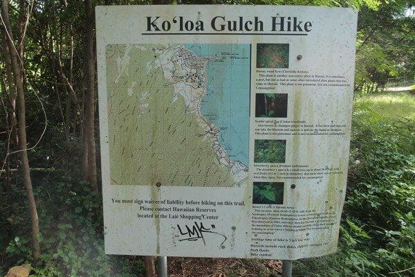 ハワイの究極のハイキングスポット「Koloa Gulch」