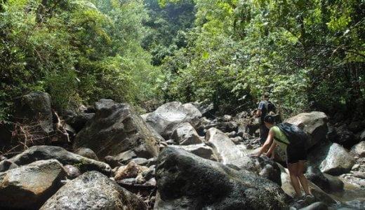 ハワイの山奥に幻の滝を探しに8時間かけて登山した結果【海外ハイキング体験記】