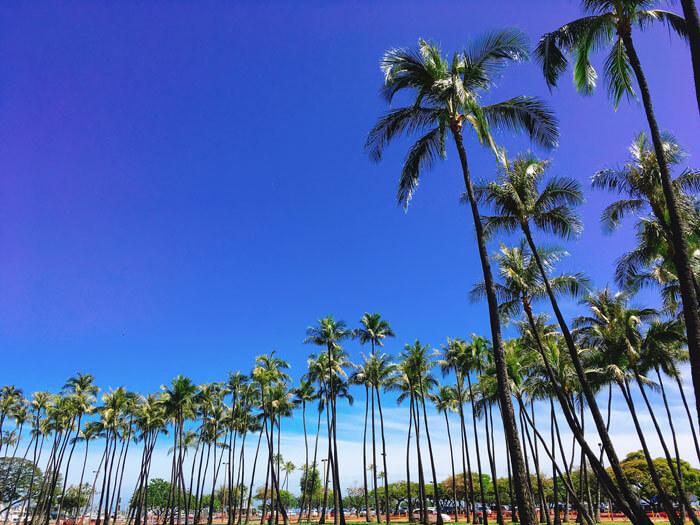 ハワイのアラモアナビーチ
